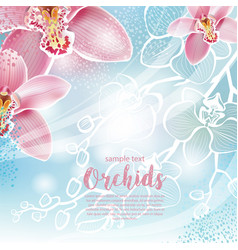 Greeting card with orchids flowers vector