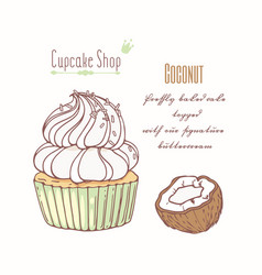 Hand drawn cupcake coconut flavor vector