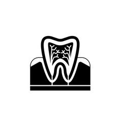 Tooth anatomy solid icon vector