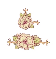 Beautiful hand drawn vintage style floral design vector image