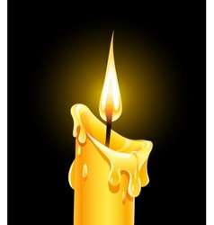 fire of burning wax candle vector image