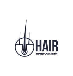 Hair follicle in hair bulb icon vector