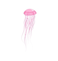 Pink jellyfish floating in space vector