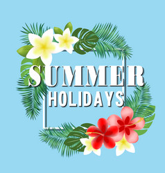 summer holidays flowers blue background ima vector image
