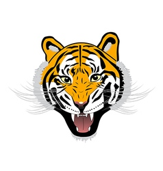 Tiger anger of a tiger head vector
