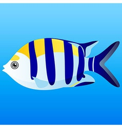 A of a yellow blue and white indo-pacific s vector