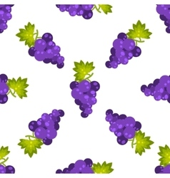 Purple grapes fruit seamless pattern vector