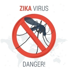 Zika virus infographic icon danger vector