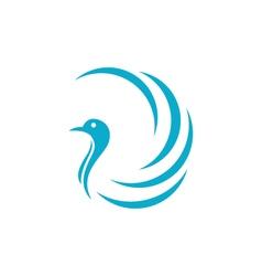 Bird logo Template vector image