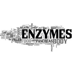 What on earth is an enzyme text word cloud concept vector