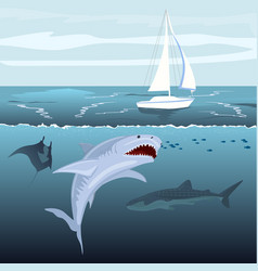 Hungry shark attacks yacht ship from ocean water vector