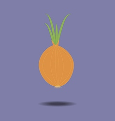 Yellow onion with fresh green sprout vector
