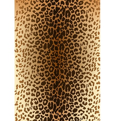 Leopard spotted fur pattern vector