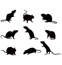 Silhouettes of rats vector image vector image