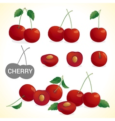 Set of cherry in various styles and format vector