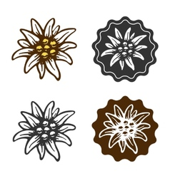 Edelweiss flower symbol alpinism alps germany logo vector