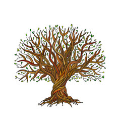 Big tree with roots for your design vector