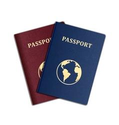 Passport vector image