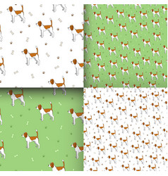 Set of seamless pattern with cute dog breed beagle vector