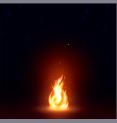 Isolated abstract realistic fire flame image vector