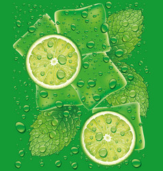 Mojito with lime slice ice cubes mint leaf vector