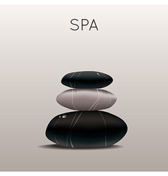 Spa with stones vector