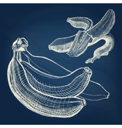 Bananas hand drawn engraving drawing on chalkboard vector image