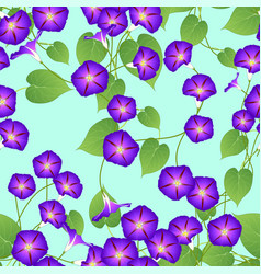 Purple morning glory on green mint background vector