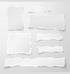 set of torn paper pieces scrap paper object strip vector image