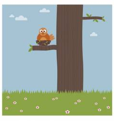 Bird in a tree vector