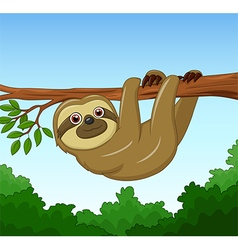 Cartoon happy sloth hanging on the tree vector