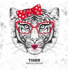 retro hipster animal tiger hand drawing muzzle vector image