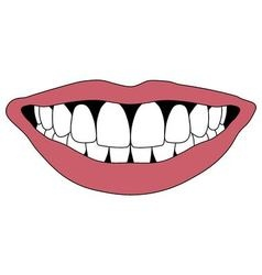Hollywood smile white teeth vector