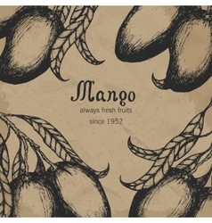 Mango tree vintage design template botanical vector