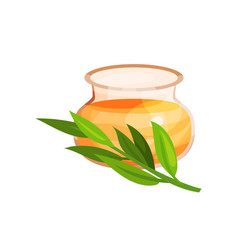 glass jar of honey and branch of eucalyptus herb vector image vector image