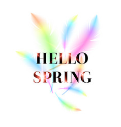 Hello spring bright bird feathers on a white vector