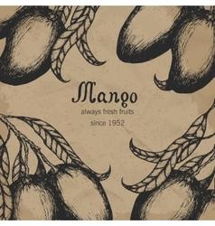 Mango tree vintage design template botanical vector