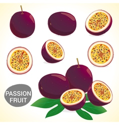 Set of passion fruit in various styles vector