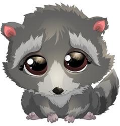 beautiful gray raccoon vector image vector image