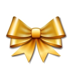 Golden gift bow on white background vector image