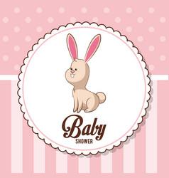 Baby shower card invitation - bunny decorative vector