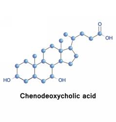 Chenodeoxycholic acid bile vector image vector image