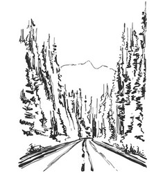 hand drawn forest sketch vector image