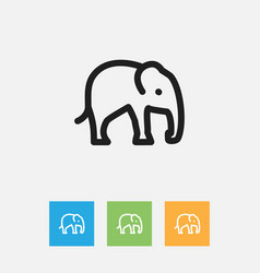 of zoo symbol on elephant vector image vector image