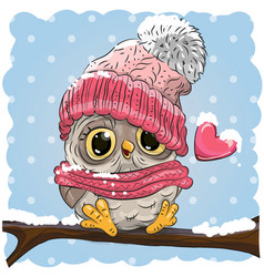 owl in a knitted cap vector image vector image