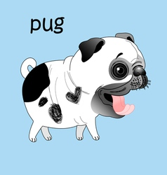 Pug large vector