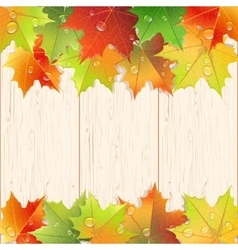 Wooden texture decorated by autumn maple leaves vector image