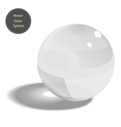 glass sphere isolated on white background vector image