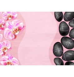 Spa background with orchids and stones vector