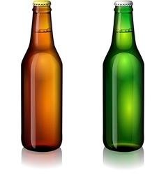 Beer bottle labels vector image